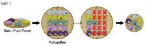 Putogethers Visual Aid